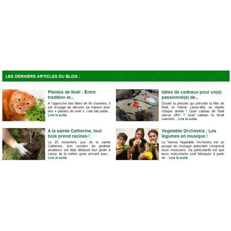 Afficher les articles de votre blog avec leurs images sur votre boutique