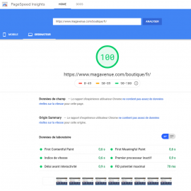100% Google PageSpeed boutique Prestashop