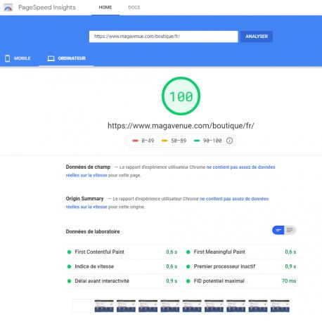 100% Google PageSpeed boutique Prestashop