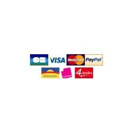 Module Paypal et carte bancaire sans compte Paypal